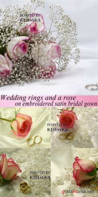 Обручальные кольца и роза  Stock Photo: Wedding rings and a rose on embroidered satin bridal gown