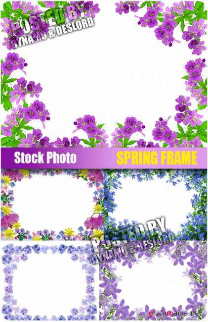 UHQ Stock Photo - Spring Frame