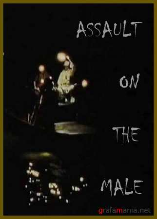 ������� � ��������� / Assault on the male (2010/SATRip)