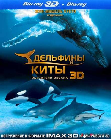 �������� � ����: ��������� ������ / Dolphins and Whales: Tribes of the Ocean (2D/2008) BD-Remux