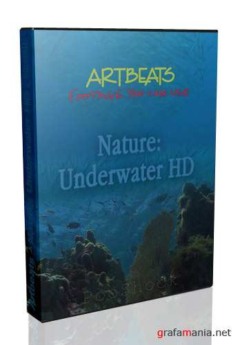 Artbeats - Nature: Underwater HD (1080i)
