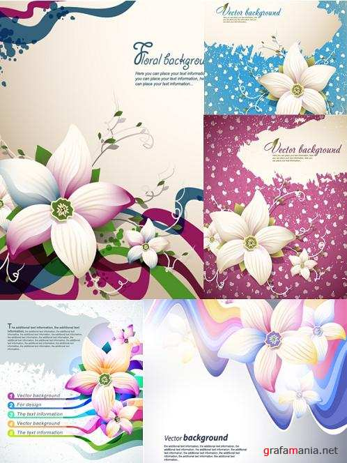 Lilies Backgrounds