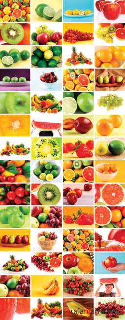Clipart - Viva Fruits