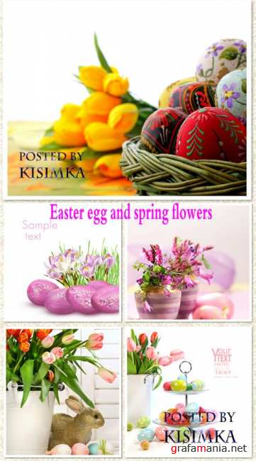 Stock Photo: Easter egg and spring flowers