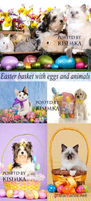 Stock Photo: Easter basket with eggs and animals