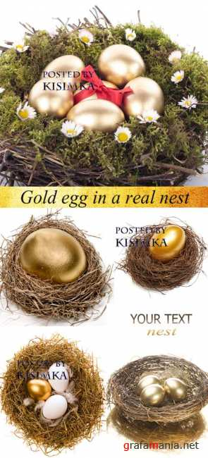 Stock Photo: Gold egg in a real nest