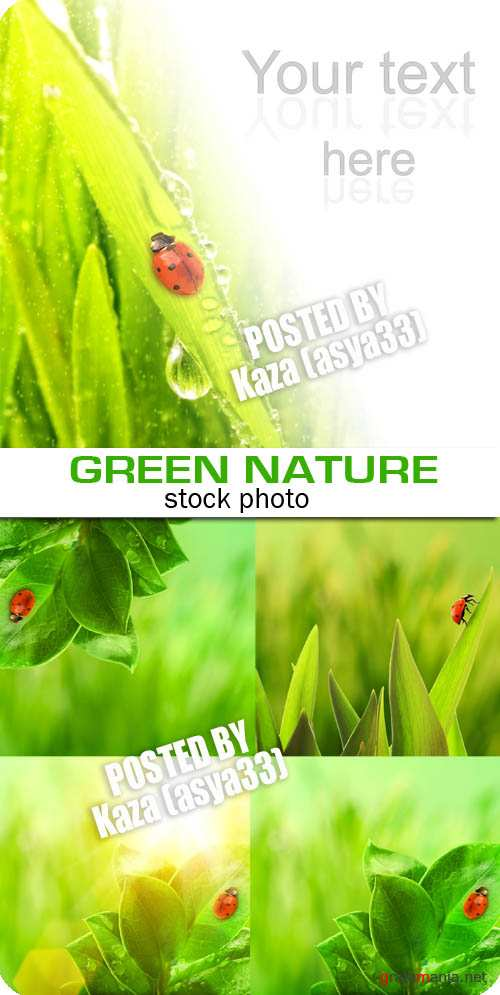 Green nature 2
