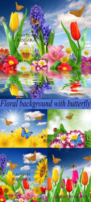 Stock Photo: Floral background with butterfly