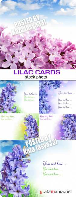 Lilac cards