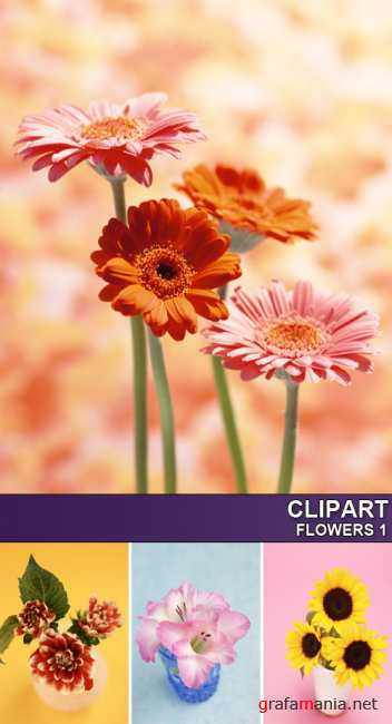 Clipart - Flowers 1