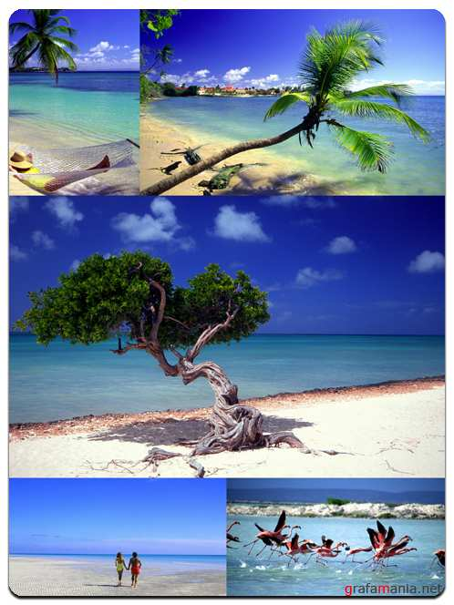 Tropical Paradise - Stock Images