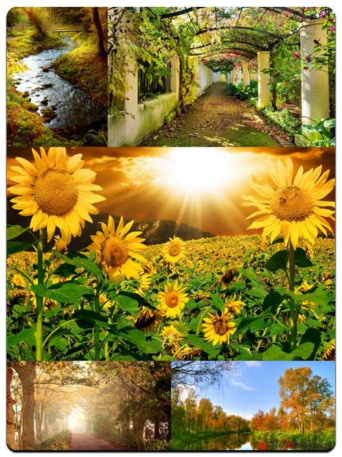 Beautiful Nature Backgrounds - Stock Images