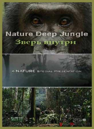 PBS Nature: Глубоко в джунглях. Зверь внутри / PBS Nature: Deep Jungle. The Beast Within (2005) HDTVRip