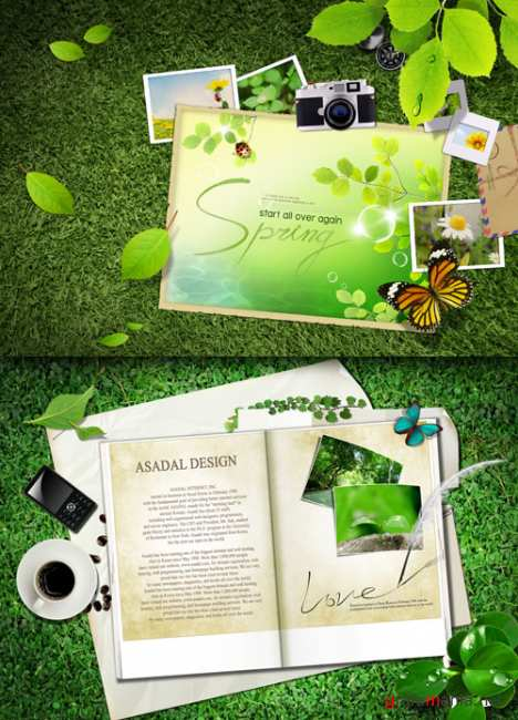 Phototemplates on the green grass