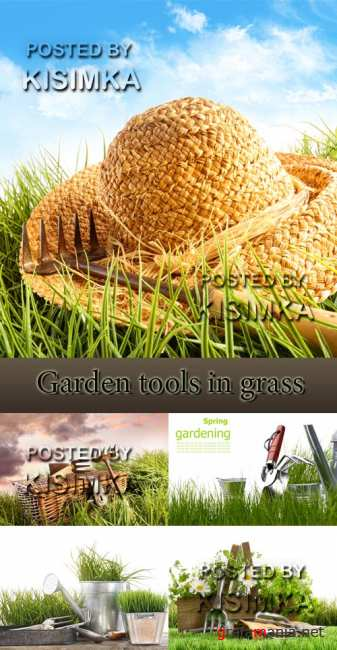 Stock Photo:Garden tools in grass