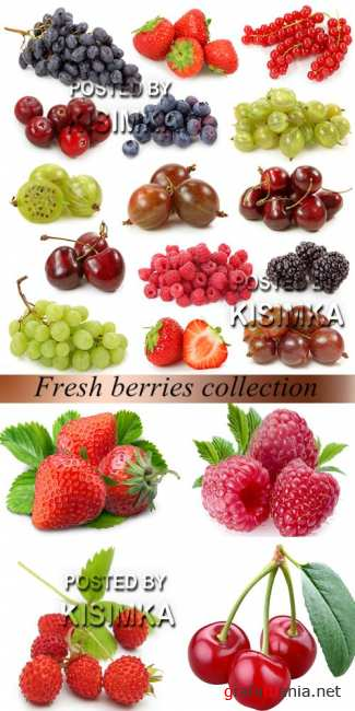 Stock Photo: Fresh berries collection on white background 2