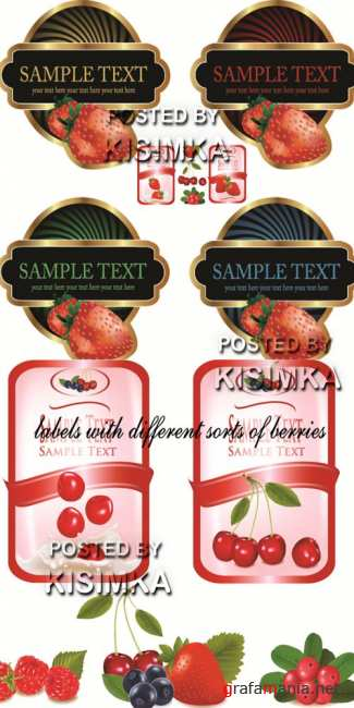 Stock: Labels with different sorts of berries