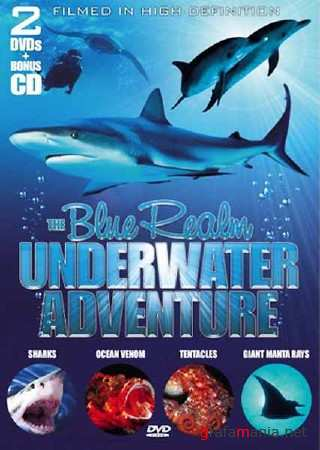 Animal Planet: Лазурная страна. Ламантины и Дюгонии (эпизод 8) / The Blue Realm. Manatees and Dugongs (2004) HDTVRip