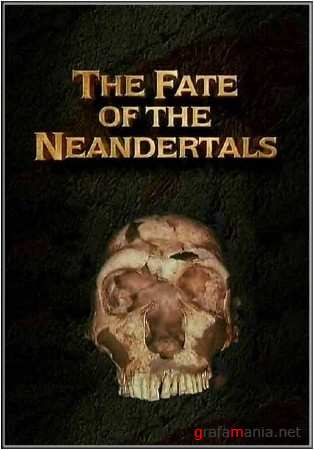 ����� ���������. ������ �������������� / Ancient mysteries. The Fate of Neandertals (2010/TVRip)