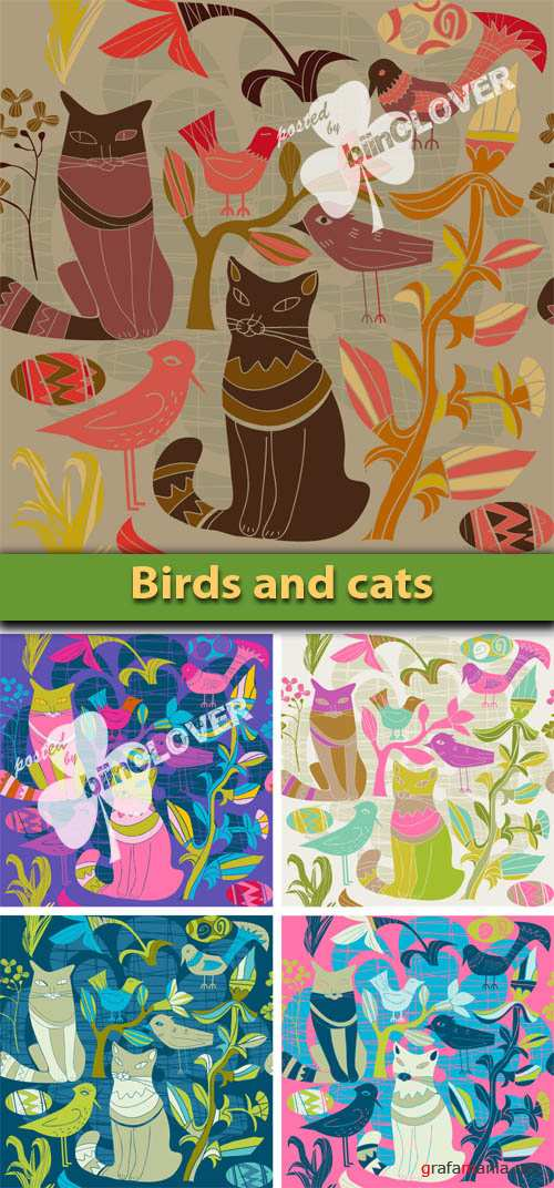 Birds and cats
