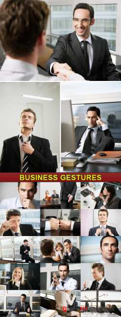 Veer Fancy - Business Gestures