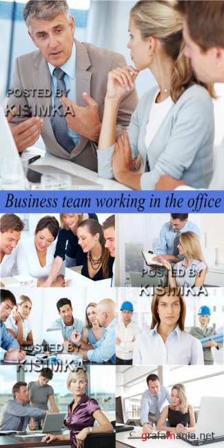 Stock Photo: Business team working in the office