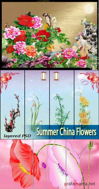 Летние цветы | Summer China Flowers (UHQ PSD)