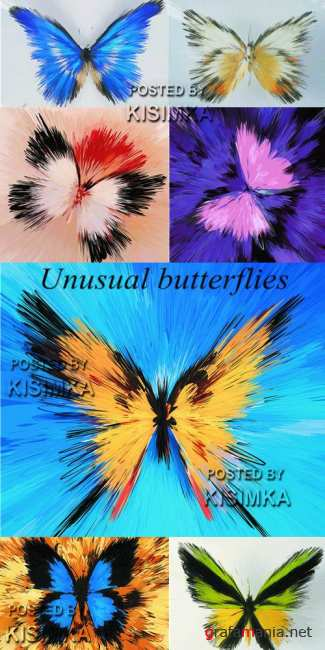 Stock Photo: Unusual butterflies