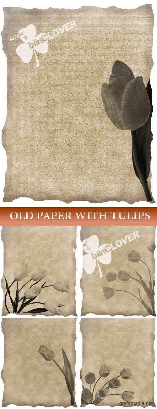 Old paper with tulips
