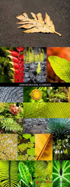 Stock Images - GWN108 Natural Elements