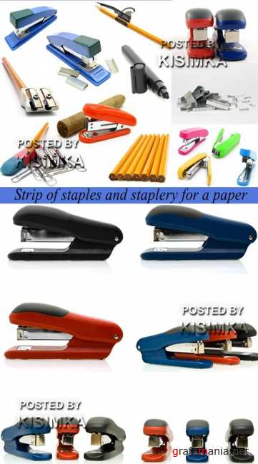 Stock Photo: Strip of staples and staplery for a paper
