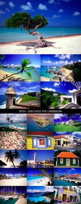 Stock Images - WT01 - Discover The Caribbean