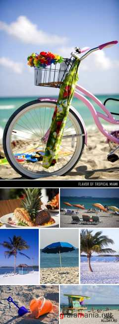 Stock Images - GWT-105 Flavor of Tropical Miami