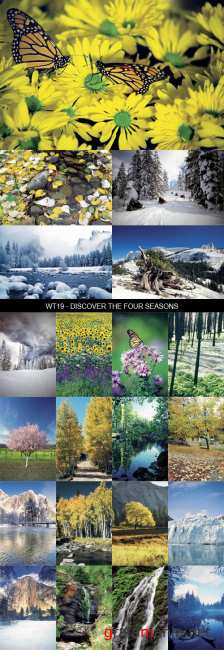 Stock Images - WT19 - Discover The Four Seasons