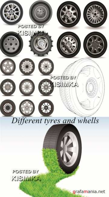 Stock vector:Different tyres and whells