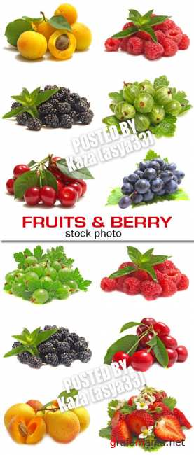 Fruits & berry