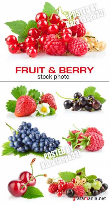 Fruit & berry 2