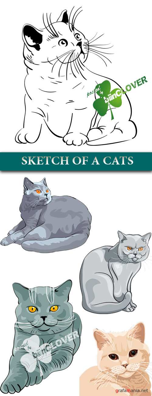 Sketch of a cats