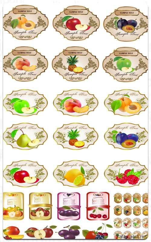 Fruit Stickers Collection - Vector Stock