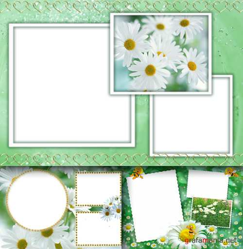 Photo Frame - White Daisies
