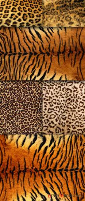 Textures are a set of animal skins