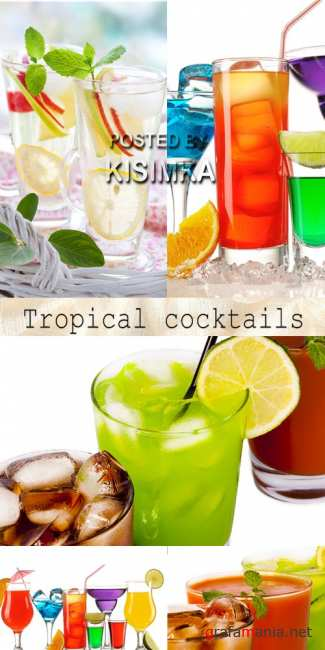 Stock Photo: Tropical cocktails 8