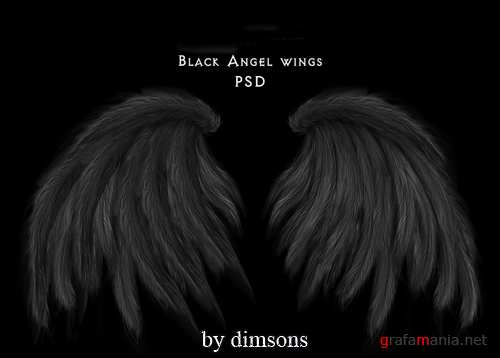Black angel wings psd