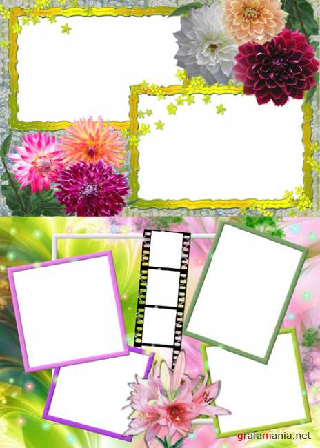 Photo Frame - Color Chrysanthemum