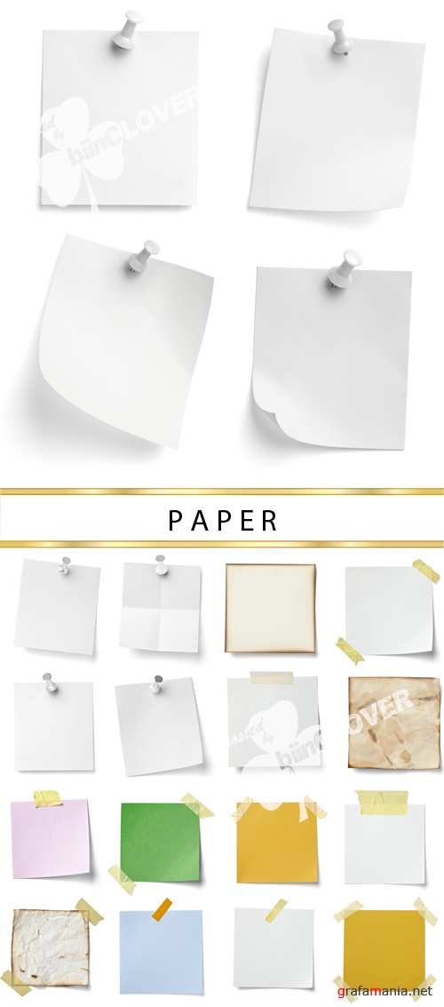 Papers 0004