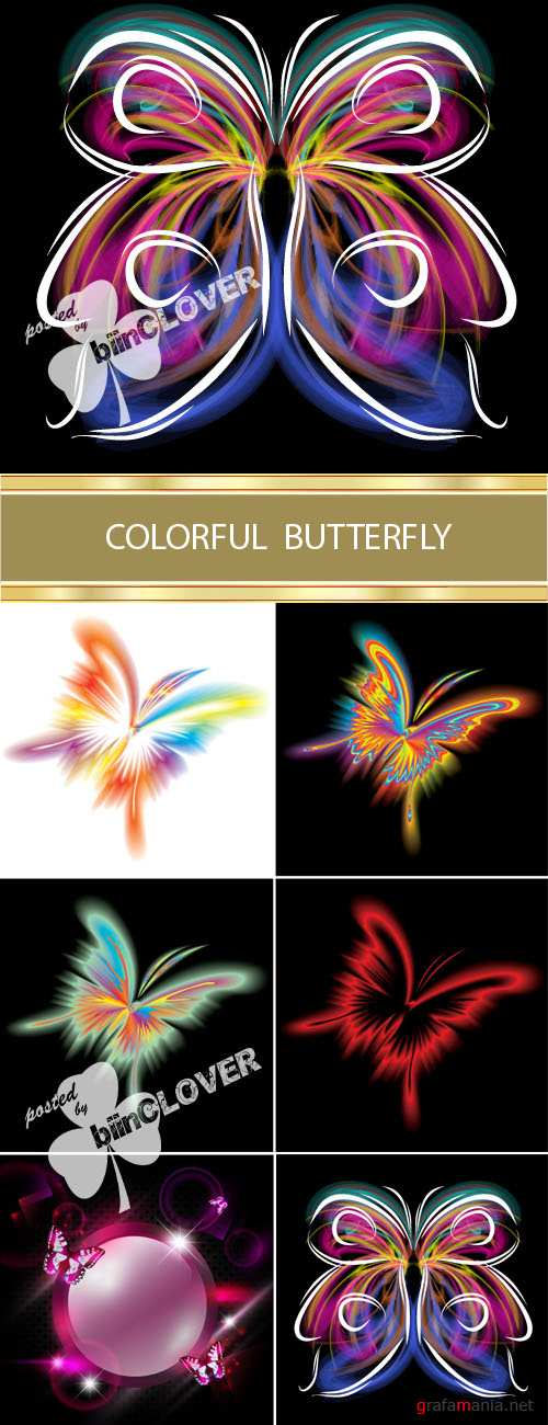 Colorful butterfly 0008