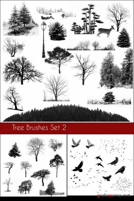 Tree Brushes and bird  Brushes set