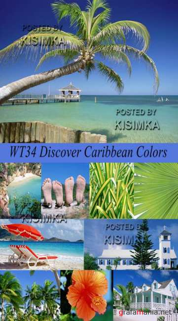 Stock Photo: WT34 Discover Caribbean Colors