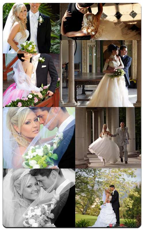 Bride and Groom - Profesional Photo Stock