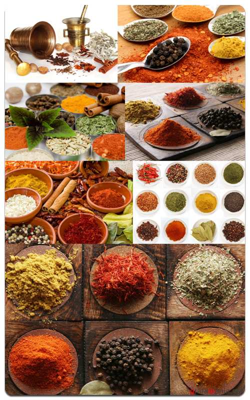 Spices - Profesional Photo Stock